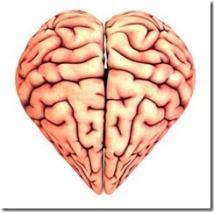 Orgasmo e mente