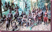 jarawa tribes