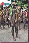 papua tribes