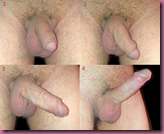 Process_of_penile_erection